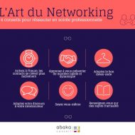 INFOGRAPHIE ART DU NETWORKING